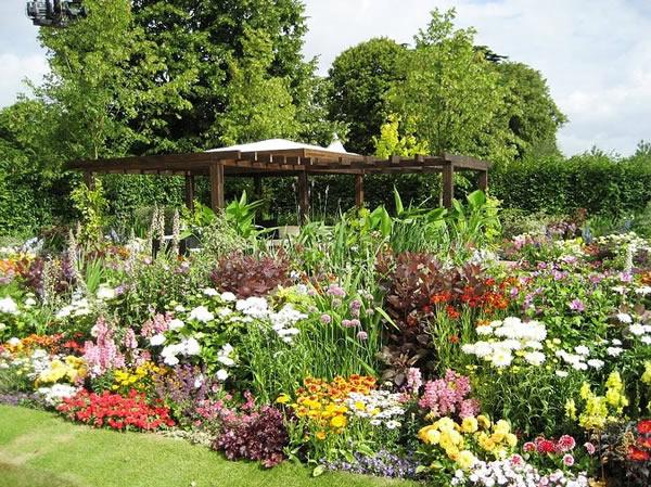 Где приватизировать садовый участок